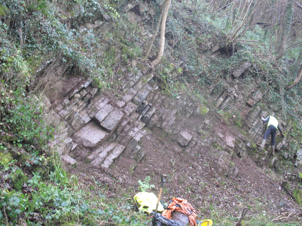 Ecton Limestone section after geoconservation