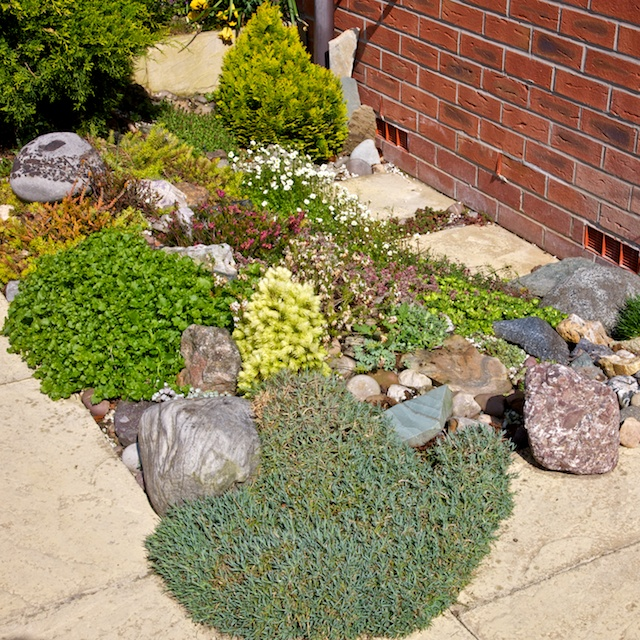 Rock garden for Small rock garden designs
